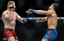 Чел Соннен о нокаутах на UFC 239
