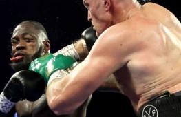 Чемпион UFC Миочич, Франсис Нганну, Тактаров и другие бойцы прокомментировали победу Фьюри над Уайлдером