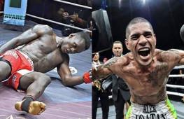 Гловер Тейшейра: Адесанья чертовски напуган подписанием Перейры в UFC