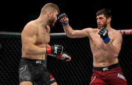 Нганну, Стерлинг и другие бойцы UFC прокомментировали победу Анкалаева