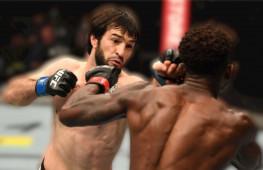 Обзор UFC 253: Адесанья-Коста, Блахович-Рейес, Тухугов-Даводу, Ибрагимов-Маркес (видео)