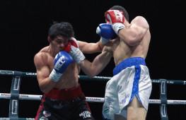 Видео: Дневник боксерского турнира в Сочи (2 января)