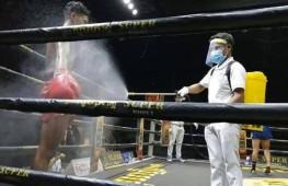 WBC предложил рекомендации по организации первых вечеров бокса