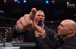 Брок Леснар может вернуться в смешанные единоборства