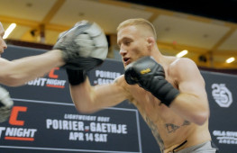 Открытая тренировка бойцов UFC on FOX 29