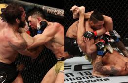 Обзор боев UFC: Крылов-Уокер, Ли-Оливейра и вызов Хабибу и Фергюсону (видео)