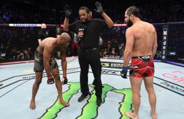 Гонорары участников турнира UFC 261