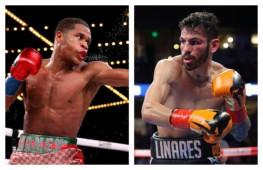 WBC санкционировал бой Хейни-Линарес, победитель встретится с Фортуной