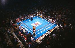 Всемирный День Бокса с «Пушкой»