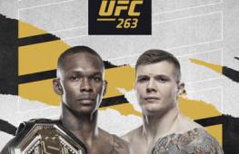 Список участников турнира UFC 263