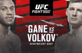 Список участников турнира UFC Fight Night 190