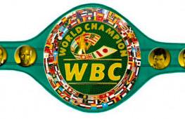 WBC: Боксеры обязаны вступить в анти-допинговую программу