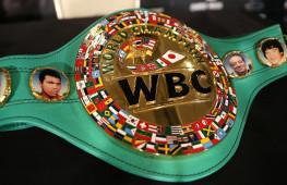 WBC опубликовал рейтинг в новой весовой категории