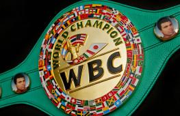 WBC назначил бои за титул и отборочные бои