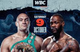 WBC назначит обязательную защиту для победителя боя Фьюри-Уайлдер