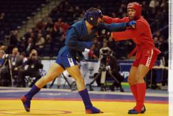 Сборная России по боевому самбо заняла первое место на Кубке мира в Москве