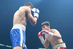 2 день: Дневник боксерского турнира в Сочи (3 января)