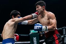 Финал боксерского турнира в Сочи (видео)