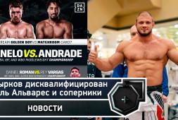 Штырков дисквалифицирован, Альварес и соперники, UFC и бокс