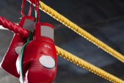 Боксеры из Казахстана, Мексики и Алжира начали с побед в AIBA Pro Boxing