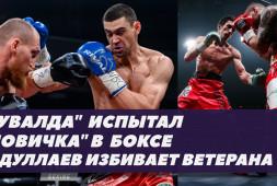 Обзор боев: Тищенко-Кудряшов и Абдуллаев-Златичанин (видео)
