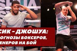 Прогнозы боксеров на бой Усик-Джошуа