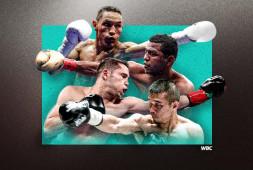 WBC санкционировал третий бой Эстрада-Гонсалес, сделал Эстраду франшизным чемпионом
