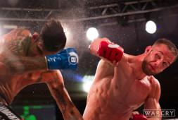 Брэндан Хэлси победил Грува, но лишился пояса чемпиона Bellator