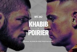 Прямая трансляция UFC 242