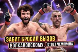 Забит бросил вызов чемпиону UFC   Усман лучше Хабиба, — считает менеджер (видео)