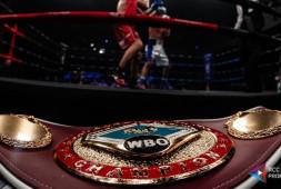 RCC Boxing Promotions проведет отборочный турнир по версии WBO