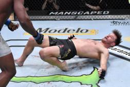 Гонорары участников турнира UFC 260