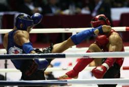 Кубок мира по кикбоксингу стартует 23 сентября в Анапе