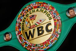 WBC уменьшает длительность боев за континентальные титулы