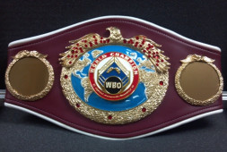 WBO: Ли и Сондерс должны договориться о проведении боя до 12 января