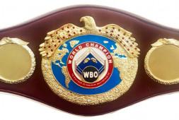 Саламов и Власов могут встретиться в поединке за пояс WBO